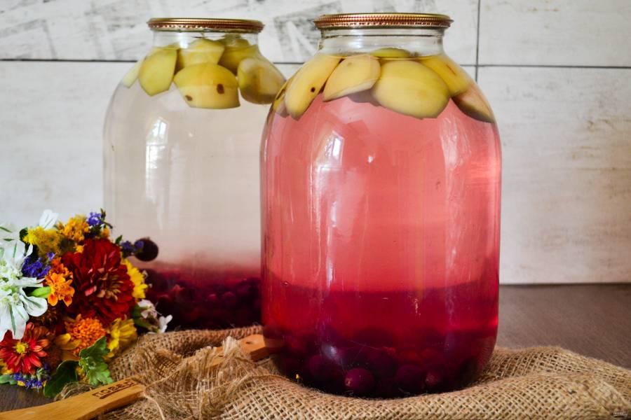 Простые рецепты компота из слив на зиму на 1-3 литровую банку с косточками и без