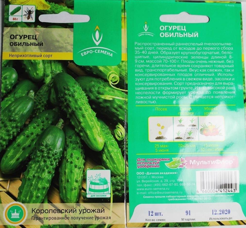 Огурцы журавленок: описание сорта, сколько дают урожая, выращивание, фото – сад и огород своими руками