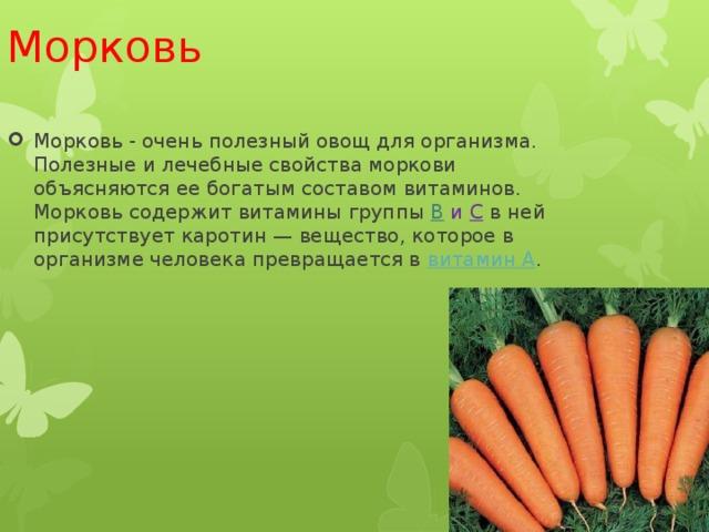 Описание фиолетовой моркови, ее состав использование