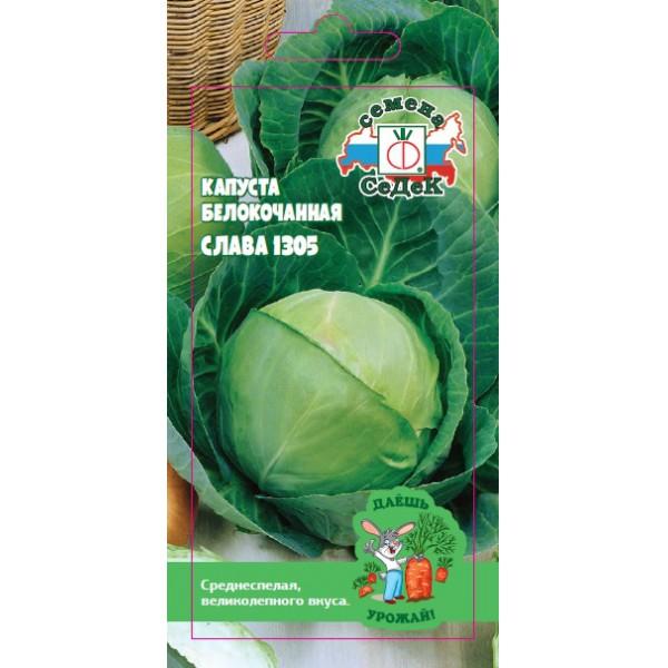 Посадка капусты слава в открытый грунт: описание сорта
