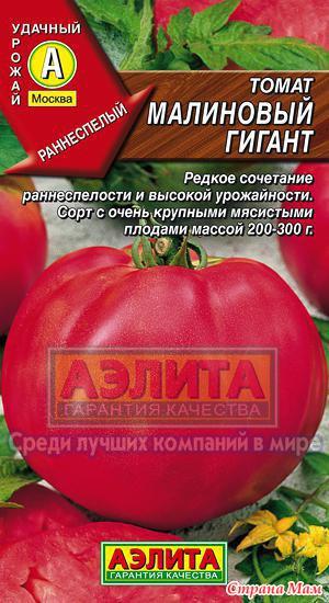 Томат исполин: описание сорта, отзывы, фото | tomatland.ru