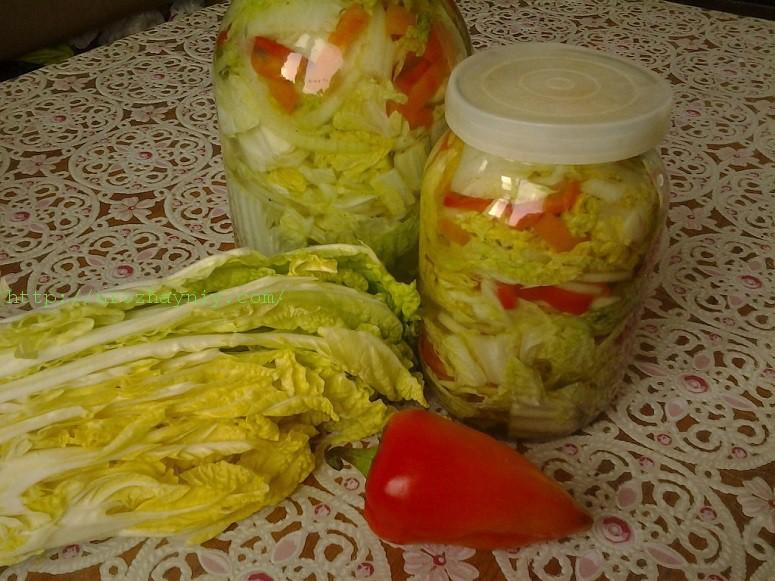 Как хранить пекинскую капусту на зиму в домашних условиях в холодильнике?