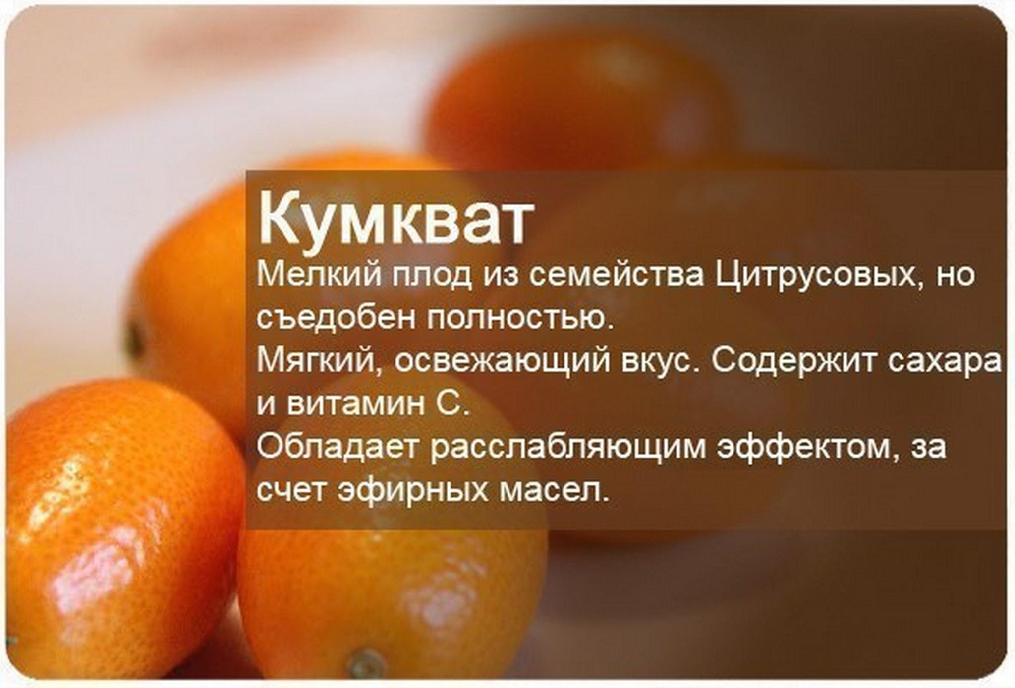 Чем полезен и вреден мандарин для организма, правила употребления