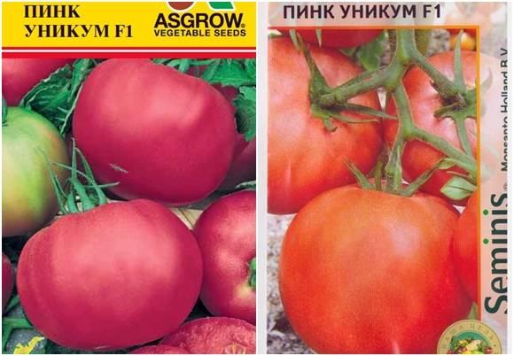 Описание и характеристика гибридного сорта томата пинк буш