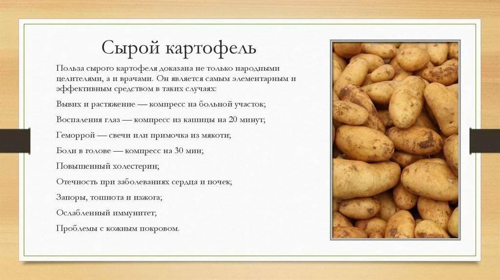 """""""земляное яблоко"""" или польза и вред картофеля для организма человека"""
