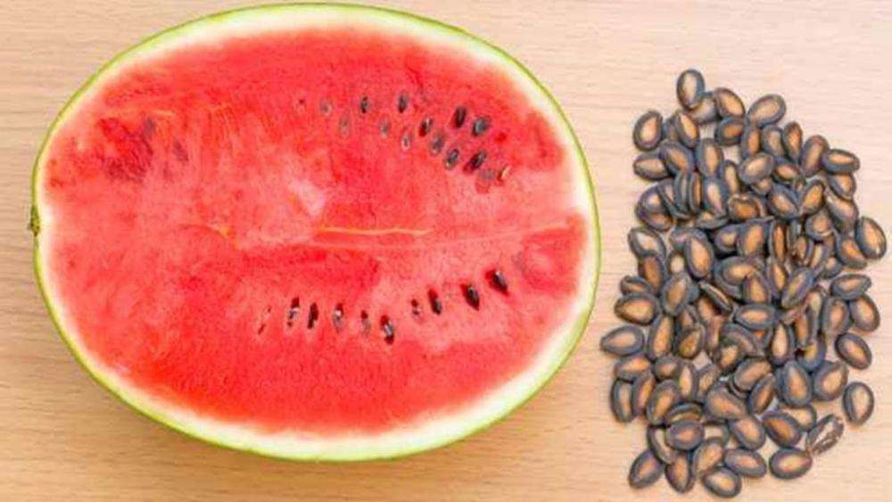 Арбузные семечки: можно ли их есть, польза и вред семян арбуза, правила и нормы употребления, чем они полезны для организма человека