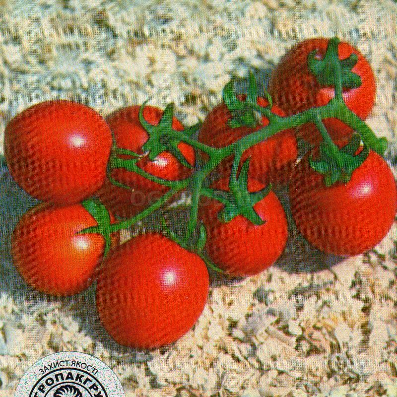 Помидоры (томаты) солероссо f1: описание, фото, характеристика, уход