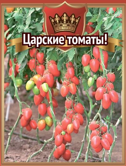 Царская ветка — величественный сорт томата. описание и отзывы о выращивании