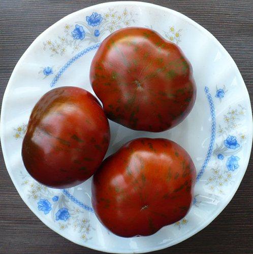 Семена томатов от коллекционеров на 2021 год: популярные и неизвестные сорта с описанием и фото