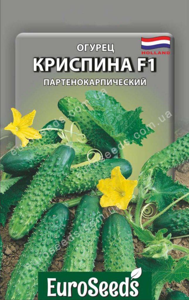 Огурец криспина f1 - описание и характеристика сорта