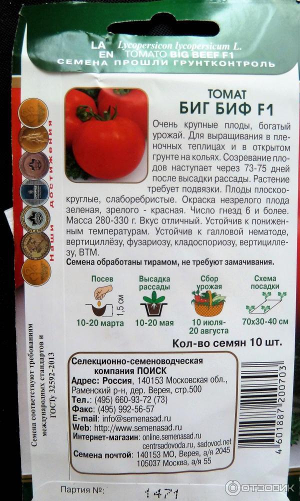 Томат биг биф: описание, отзывы, фото, характеристика. особенности выращивания | tomatland.ru