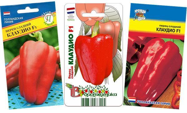 """Перец """"клаудио"""": характеристика и описание сорта, урожайность, фото, отзывы"""