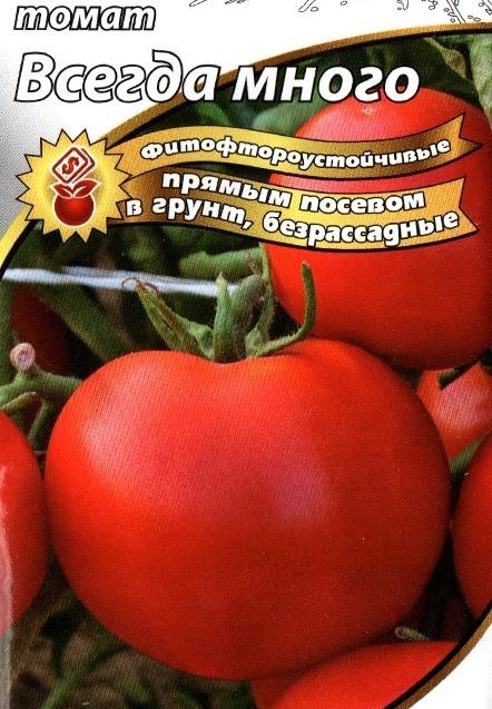 Как выраститьт помидоры без рассады из семян, в котрытом грунте, плюсы и минусы