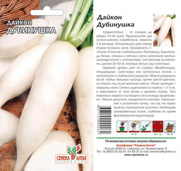 Редька дайкон – посадка и уход в открытом грунте, фото дайкона, выращивание дайкона из семян- сорта дайкона и свойства