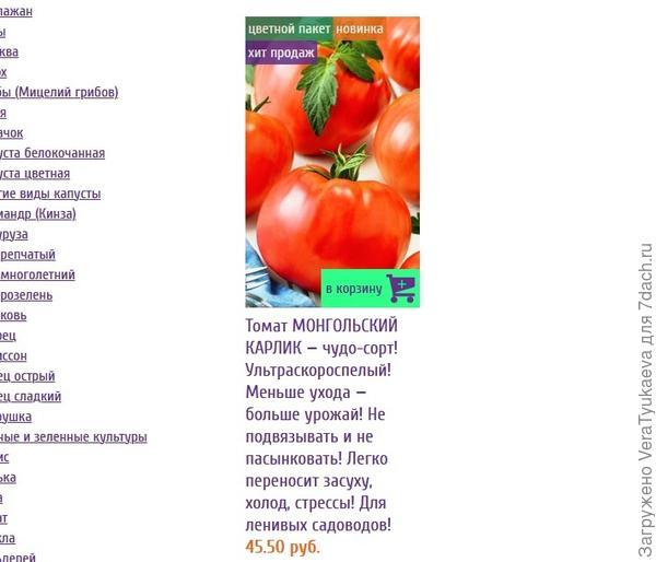 "Характеристика и описание томата ""монгольский карлик"""