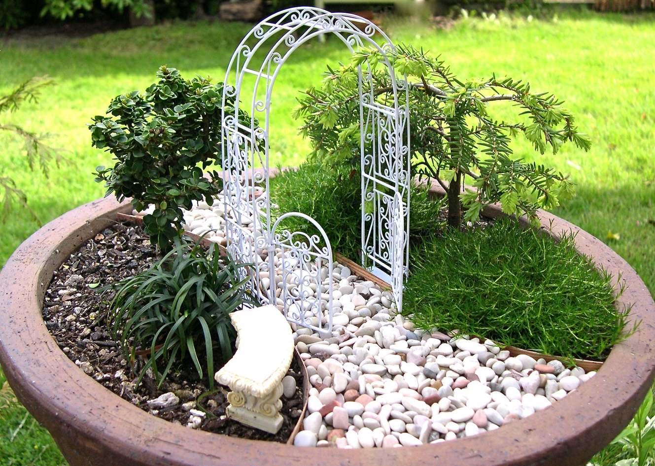Мини-сад в горшке: композиции миниатюрных участков в замкнутом пространстве