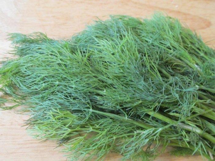 Сорта (семена) укропа на зелень: описание лучших и выращивание с фото