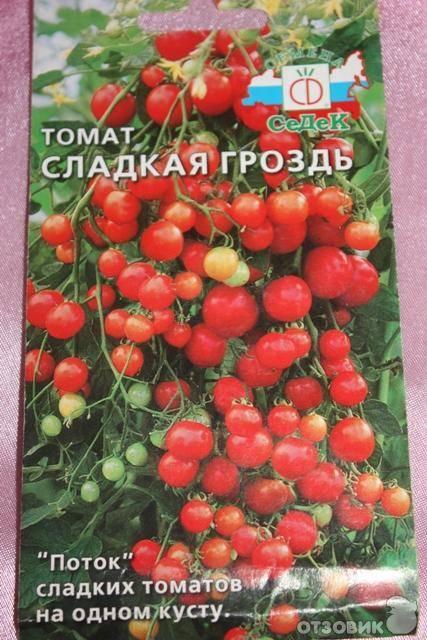 Томат бурая гроздь f1: отзывы, фото, урожайность   tomatland.ru