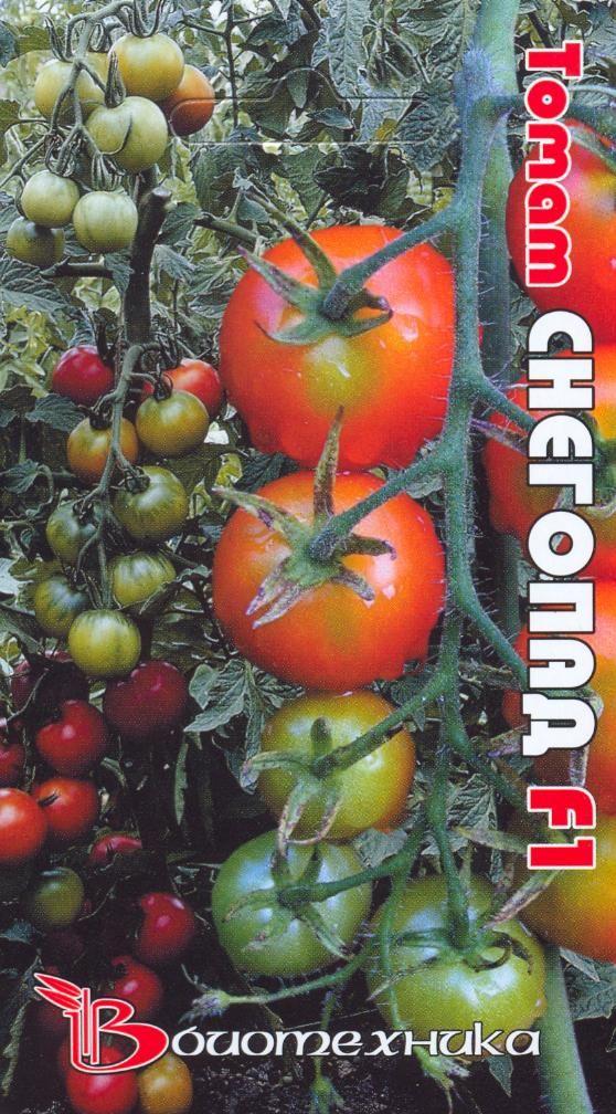 Томат снегопад f1 (50 фото): описание и отзывы, какие семена помидоров, любовь, иришка, корнабель, пинк леди, керасо, айвенго, индиго, роуз, видео
