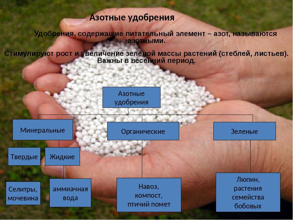 Удобрение преципитат: описание и характеристика, химический состав, инструкция по применению удобрения, отзывы