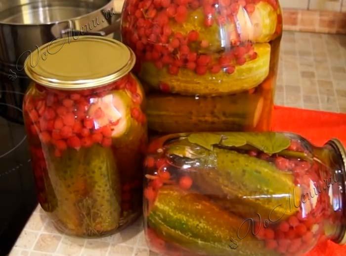 Огурцы с красной смородиной на зиму: топ 8 пошаговых рецептов с фото и видео