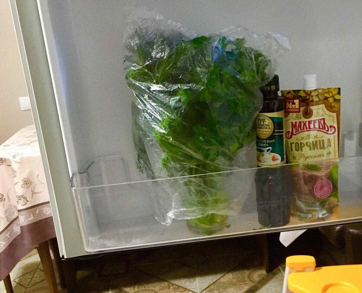 Как хранить базилик в домашних условиях: можно ли свежий, как замораживать в холодильнике на зиму, какая заготовка лучше и что делать, чтобы сберечь витамины? русский фермер