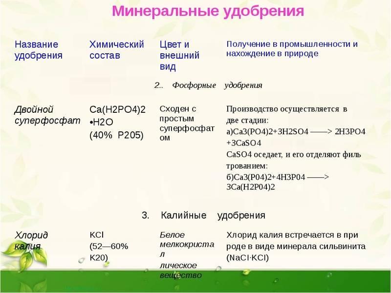 О минеральных удобрениях для сада и огорода: виды и характеристика, когда вносят