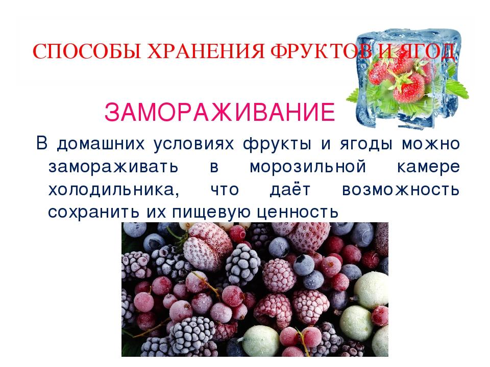 Хранение брусники: способы хранения ягод в домашних условиях, как хранить их на зиму в свежем виде