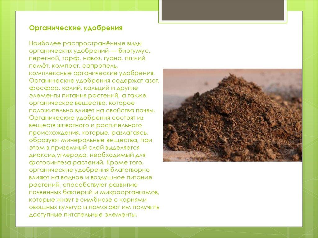 Применение торфа в качестве удобрения для картофеля: особенности, плюсы и минусы