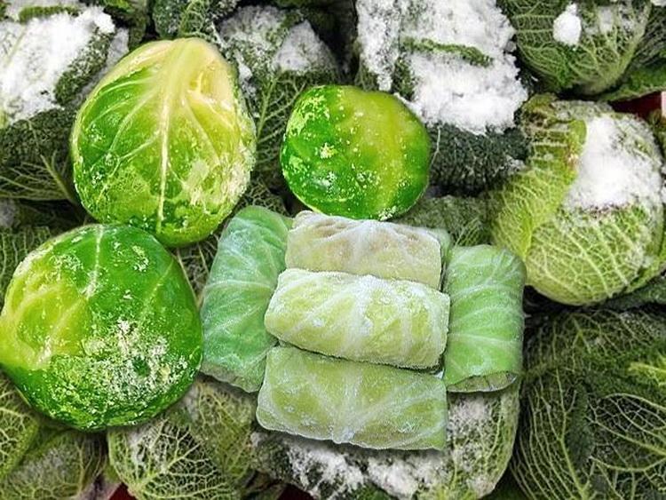 Заморозка овощей на зиму: методы, подготовка, фото