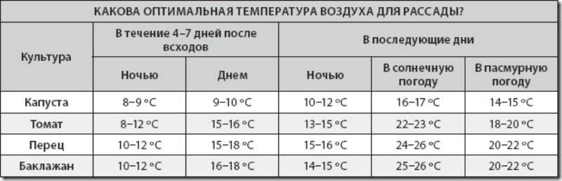 Минимальная температура для рассады томатов - в рассаде