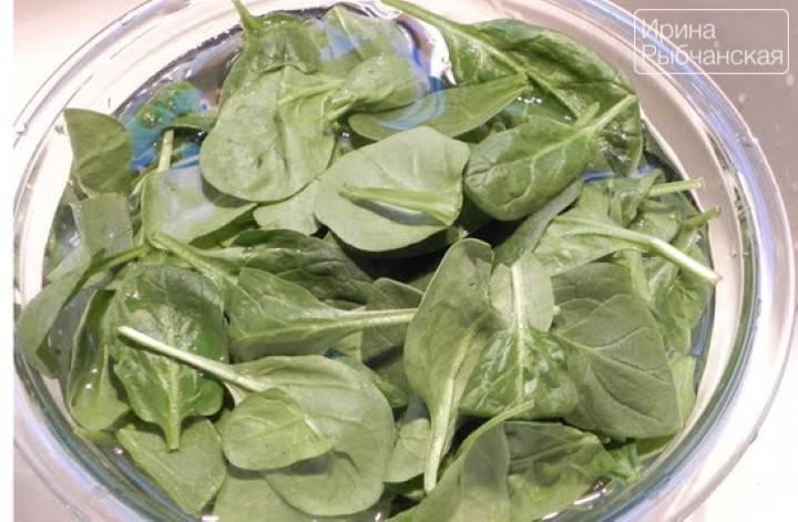 Как заморозить шпинат на зиму в домашних условиях: советы