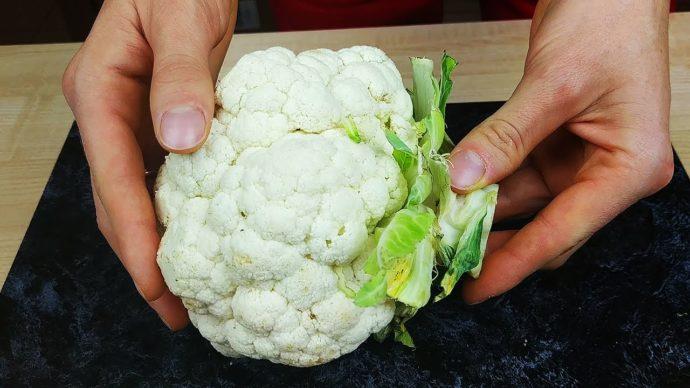 Выращивание капусты, борьба с болезнями и вредителями: 10 вопросов. как вырастить капусту на грядке