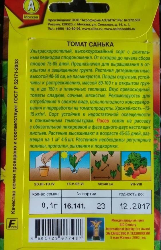 Томат санька - фото и видео посадки и выращивания томата своими руками