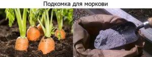 Подкормка моркови в открытом грунте: сроки, способы, правила