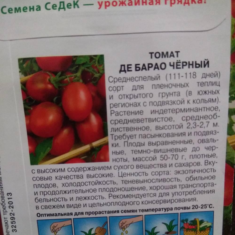 """Томат """"взрыв"""": фото и описание сорта, характеристики и урожайность плодов-помидоров, рекомендации по выращиванию русский фермер"""