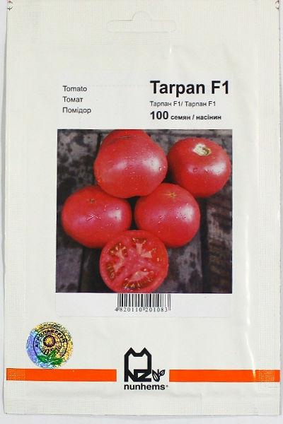 Томат тарпан — голландский гибрид для южных широт