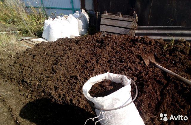 Когда вносить навоз в почву – весной или осенью, чтобы успел разложиться и не повредил корни