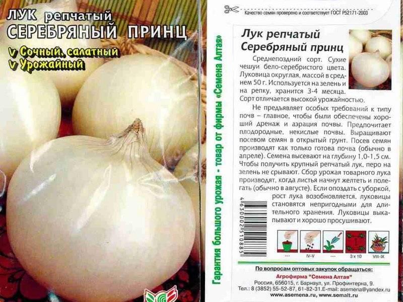 Полезные свойства белого лука, описание сортов, выращивание и уход