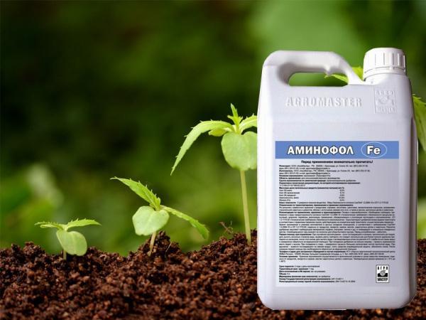 Названия и применение гербицидов сплошного и избирательного действия