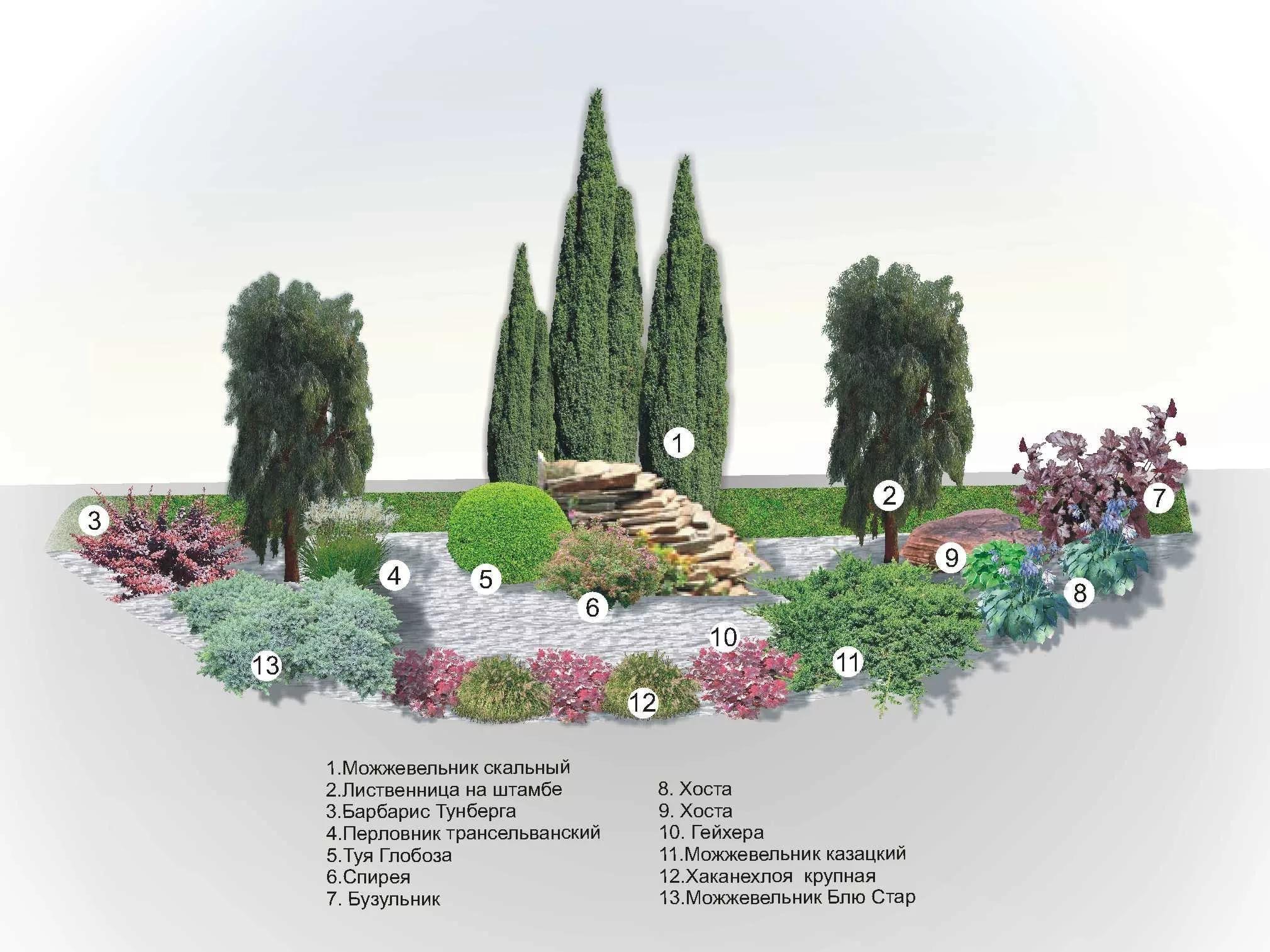 12 правил размещения растений в цветниках