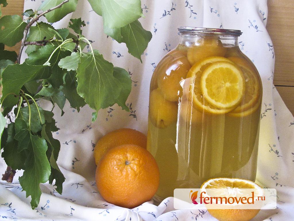 Абрикосы на зиму: что приготовить и 19 лучших рецептов в домашних условиях