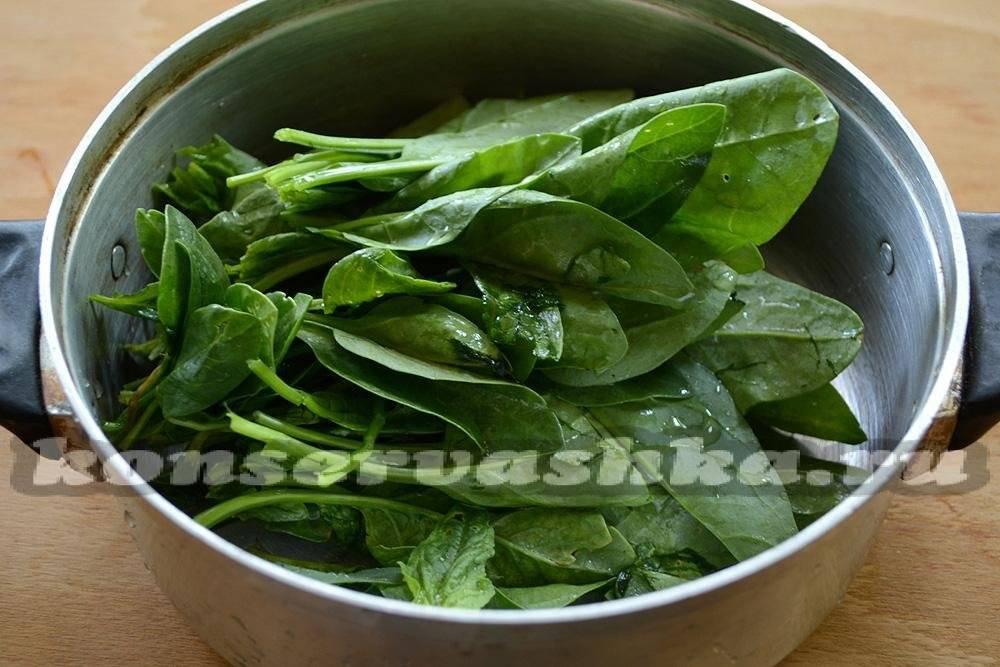 Как заготовить шпинат на зиму — познаем вместе