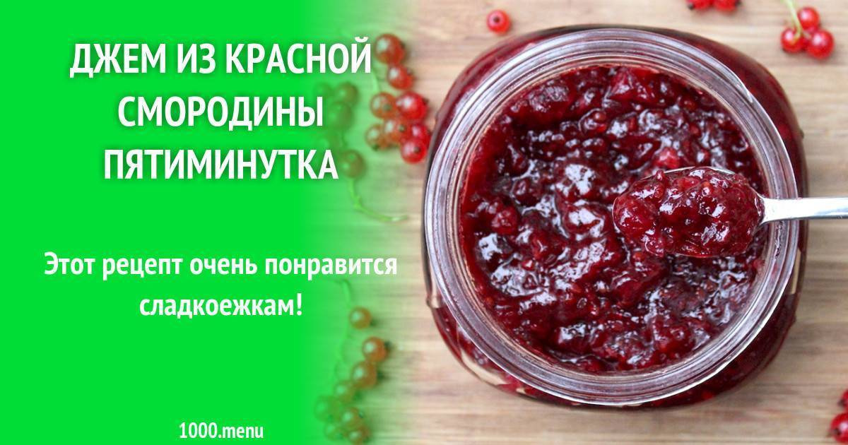 Черная смородина с сахаром на зиму без варки: 13 лучших рецептов приготовления