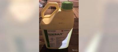 Как разводить гербицид арсенал и проводить обработку