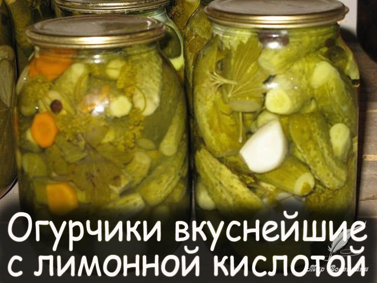 Консервированные огурцы с лимонной кислотой на зиму: лучшие рецепты без уксуса, отзывы хозяек