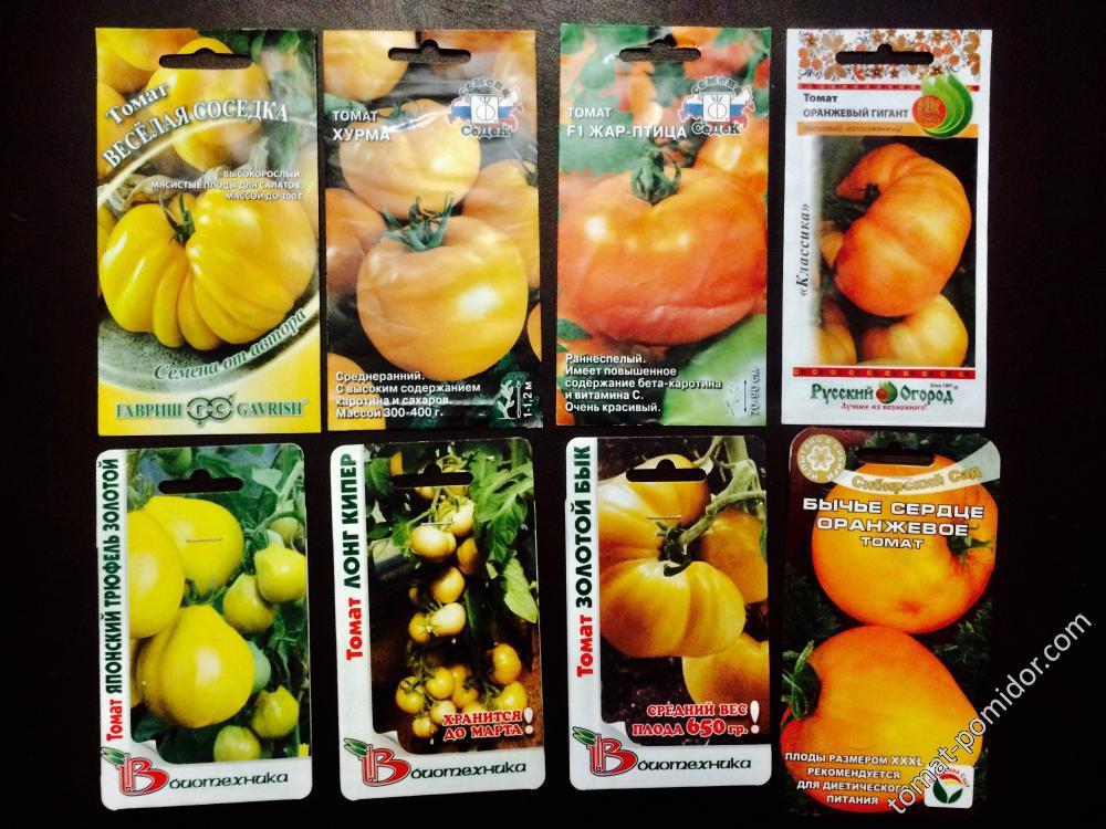 Витаминный сорт с красивыми плодами — томат вифлеемский огонь: подробное описание помидоров