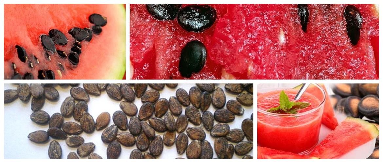 Вред и польза арбузных семечек для организма