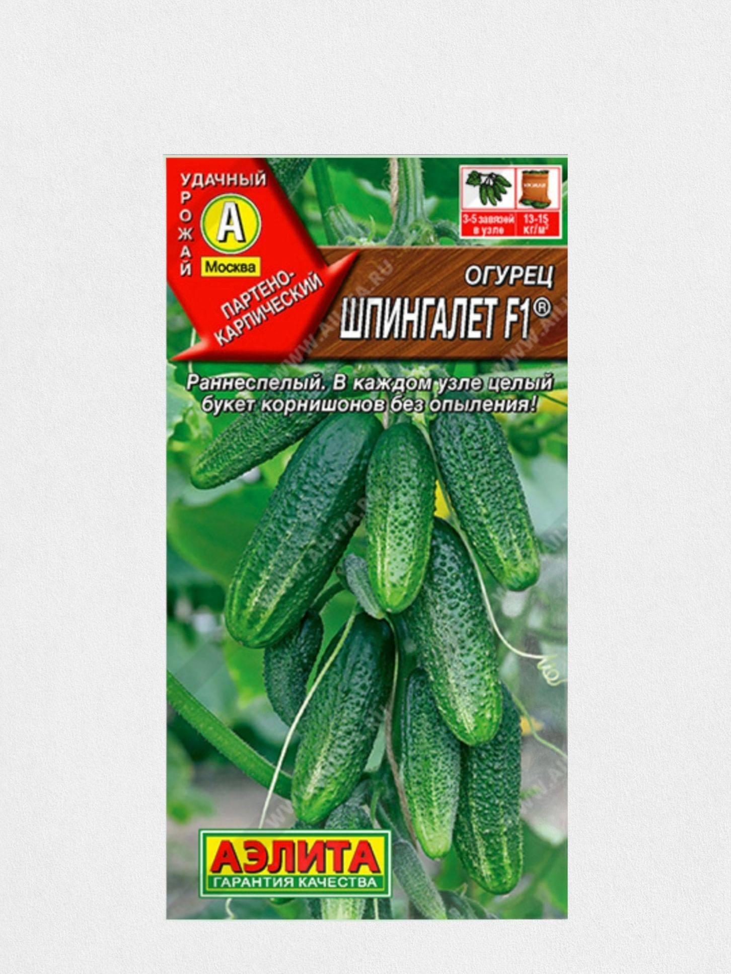 Огурцы кадриль f1: отзывы и фотографии, характеристики сорта, посев и посадка, уход и урожайность
