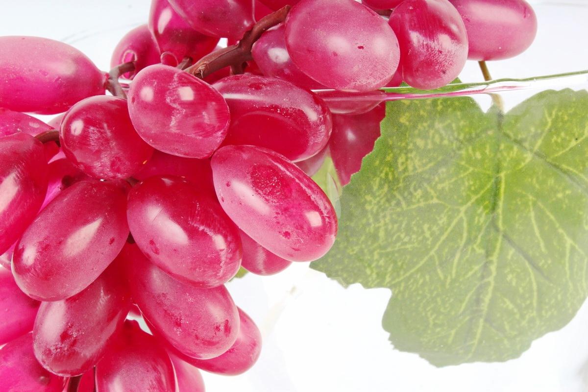 Сорта винограда: названия, свойства, особенности посадки и сбора урожая (75 фото)